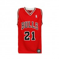 Camiseta Nba Niño Chicago Bulls Oficial Basquet